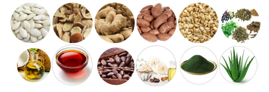 food export banner